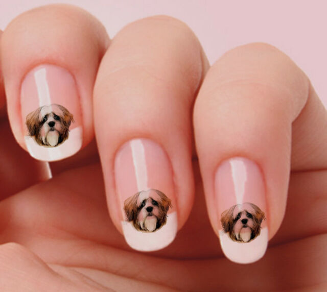 20 Nail Art Stickers Transfers Decals #880 - Lhasa Apso Just Peel ...