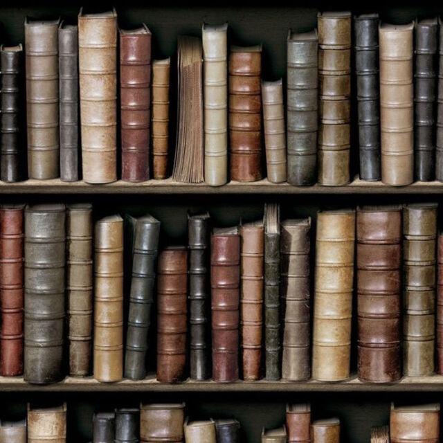 Bookcase wallpaper vintage antique library classic paste the wall vinyl koziel