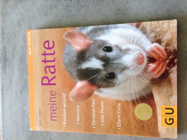 Meine Ratte von Gerd Ludwig (2008, Taschenbuch)