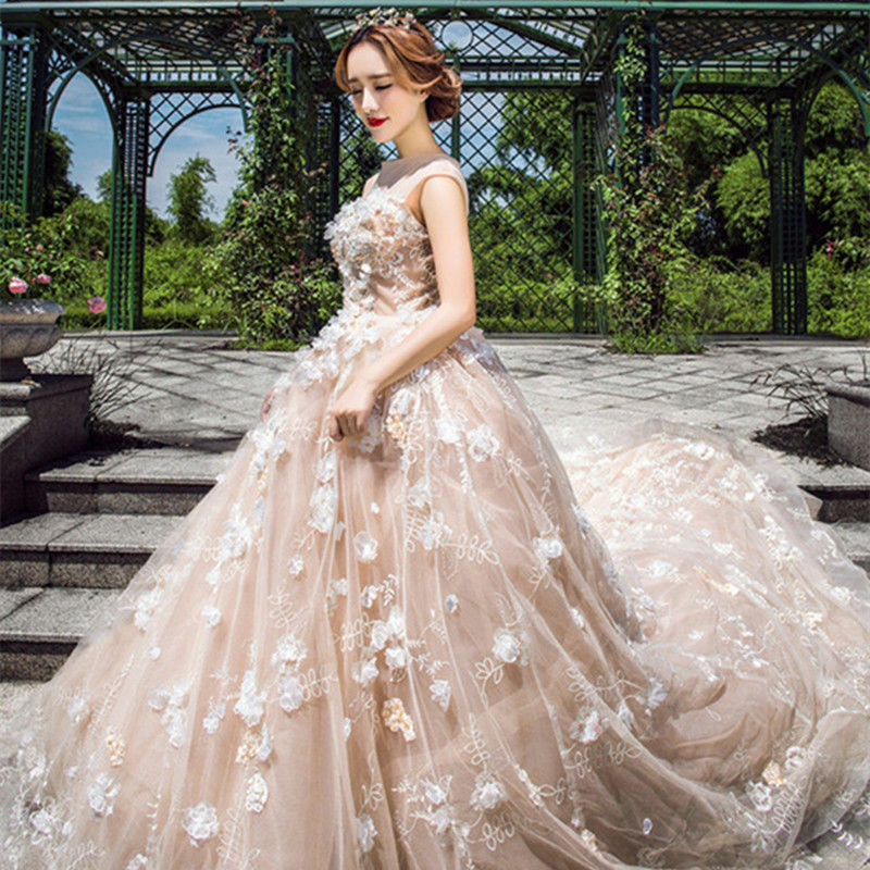 Ivory Applique Train Wedding Dress Quinceanera Formal Occasion Prom ...
