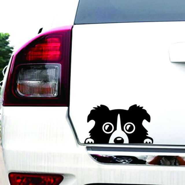 2018 1pc border collie dog car sticker vinyl cars decals auto car window sticker
