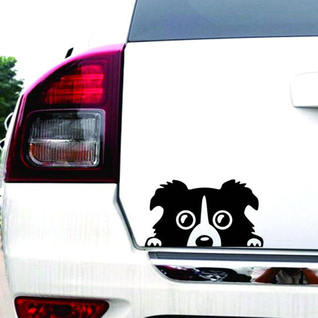 2018 1pc border collie dog car sticker vinyl cars decals auto car window sticker