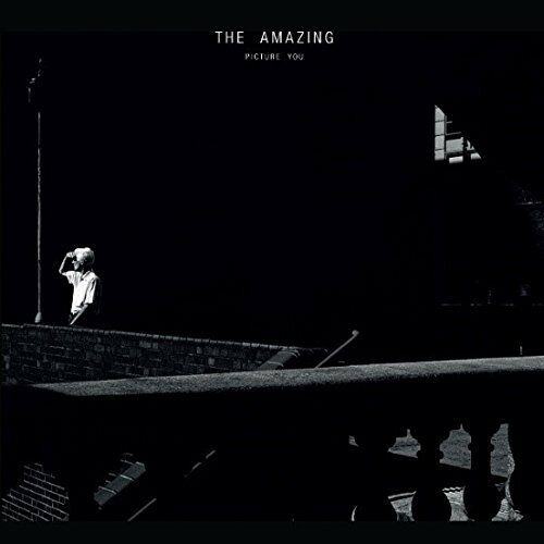 The Amazing-Picture You  CD Digipak NEU