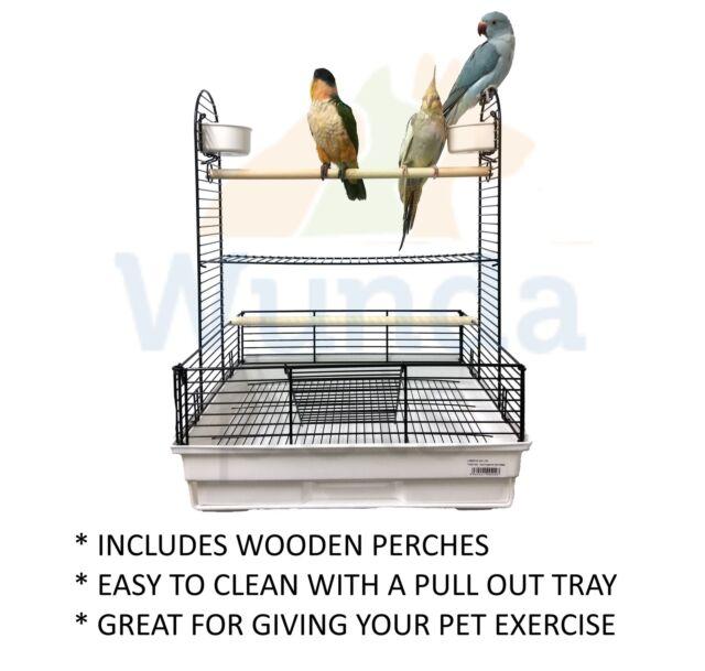 liberta harrington 2 parrot bird cockatiel conure senegal table top play stand