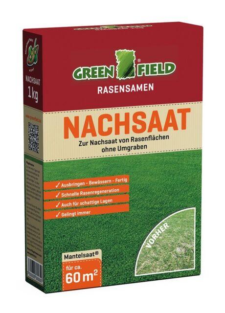 Greenfield Rasen Nachsaat Reparatur 1 kg für ca. 60 m²  Rasensamen, Grassamen