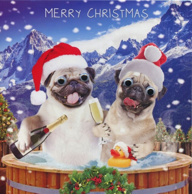 3d gogglies eyes merry christmas card 4 design choices 1st greeting picture 2 of 2 m4hsunfo