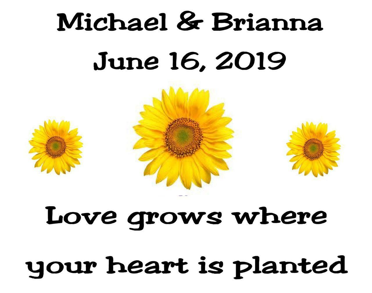 Wedding Favor Seed Packets Personalized Sunflower Custom Favors   eBay