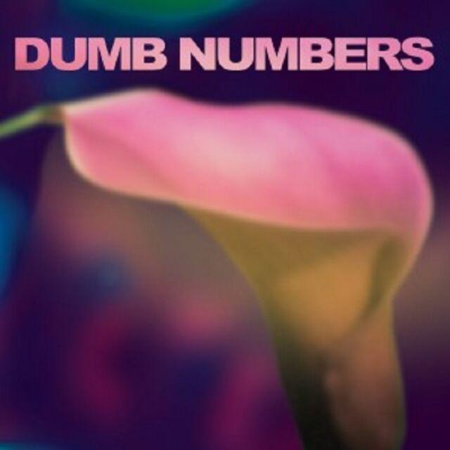 DUMB NUMBERS - DUMB NUMBERS  VINYL LP  9 TRACKS  ALTERNATIVE ROCK  NEU