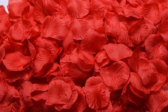 1000 5000pcs various colors silk flower rose petals wedding party