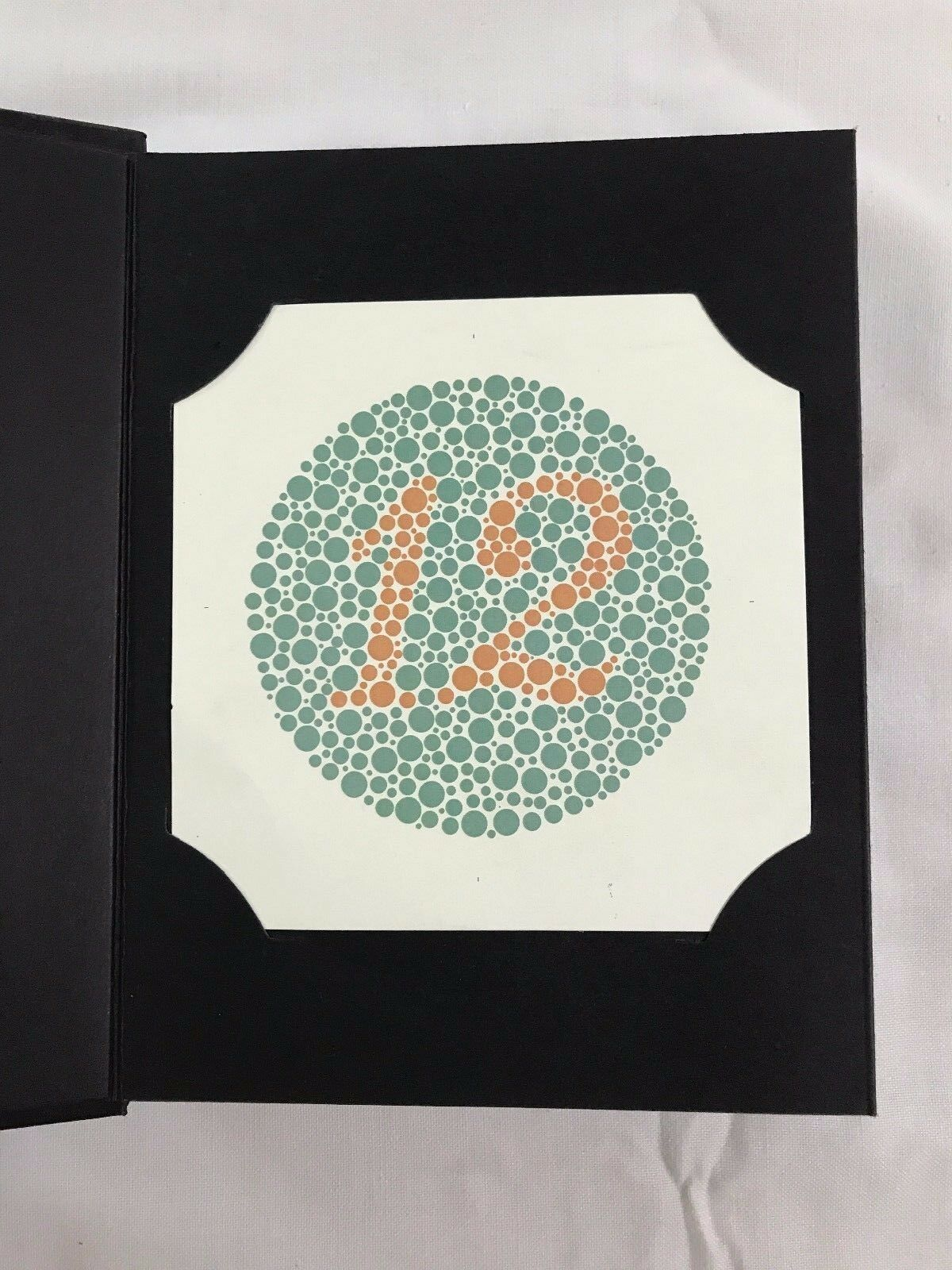 38 Plate Ishihara Tests Book for Color Blindness Ship From USA 1 Day ...