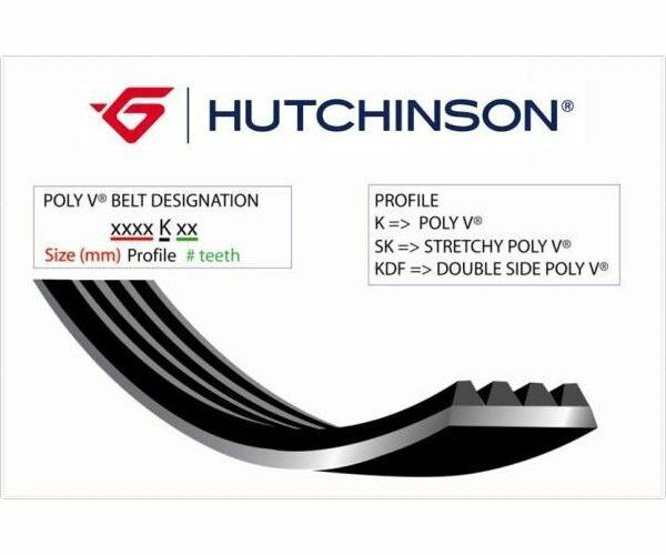 HUTCHINSON V-Ribbed Belts Poly-V 1725 K 6