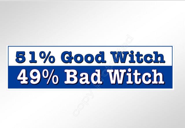 Funny car bumper sticker 51 good witch 49 bad witch pagan vinyl