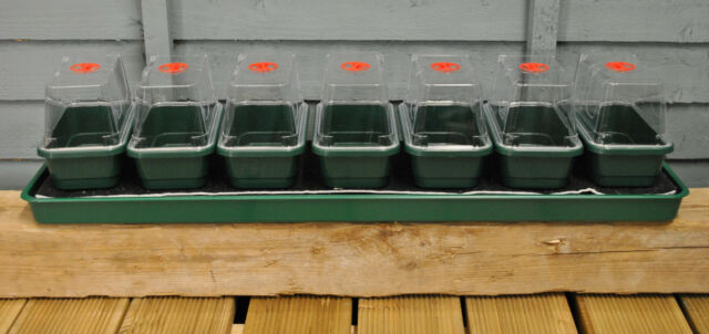 Superior Garland Super 7 Windowsill Self Watering Plant U0026 Seed Propagator Greenhouse