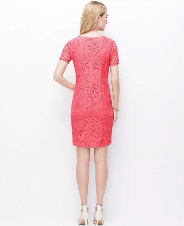 Ann Taylor Pink Lace Shift Dress Sz 0 Soft Desert Rose | eBay