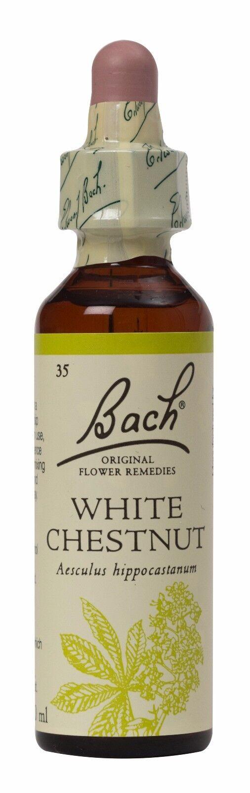 Bach Original Flower Remedies White Chestnut Aesculus Hippocastanum