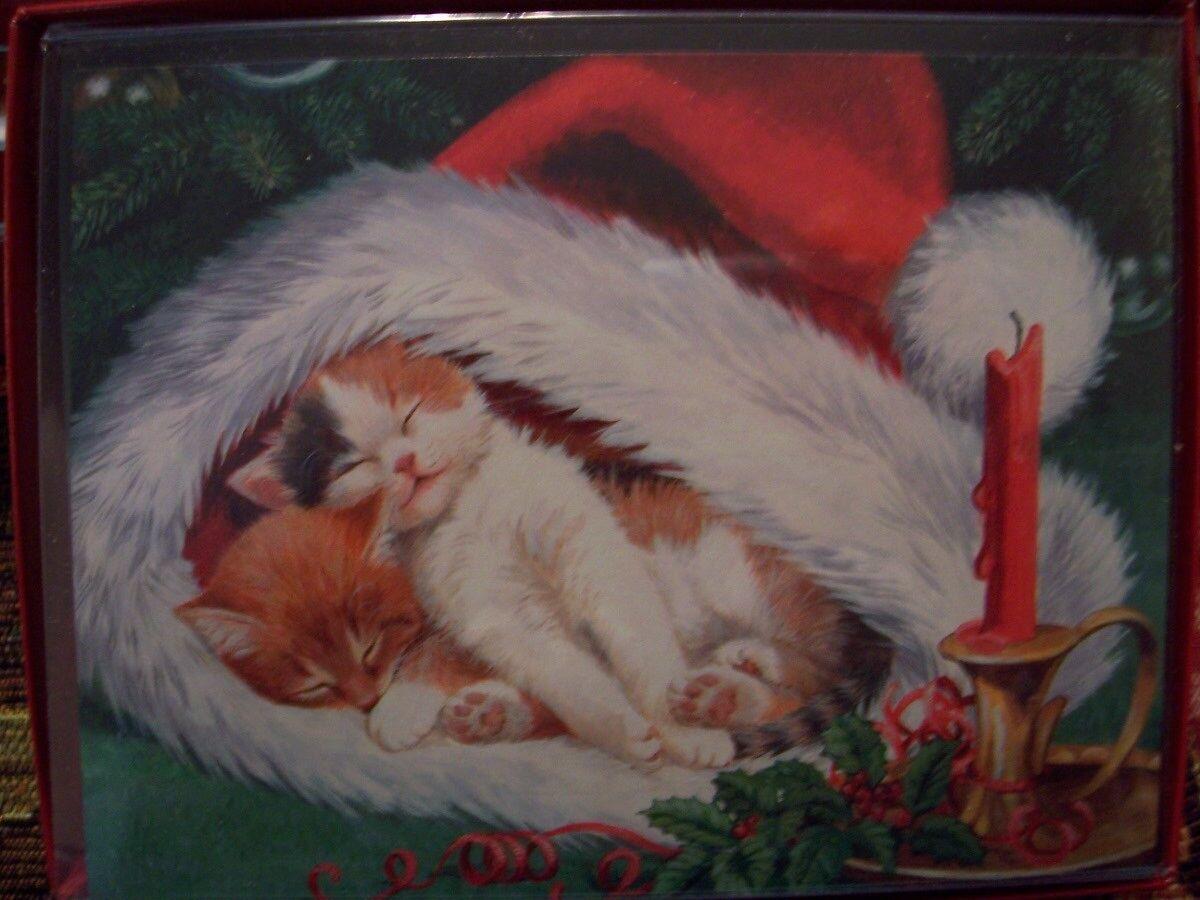 Leanin Tree Christmas Card Set Adorable Kittens Cat in Santa Hat ...