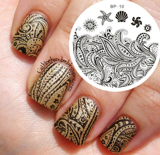 Starfish Shell Theme Nail Art Stamp Template Image Plate Born